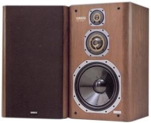 NSX-100000